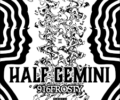 Mr.Valentine Lyrics Song – Half Gemini – 916frosty